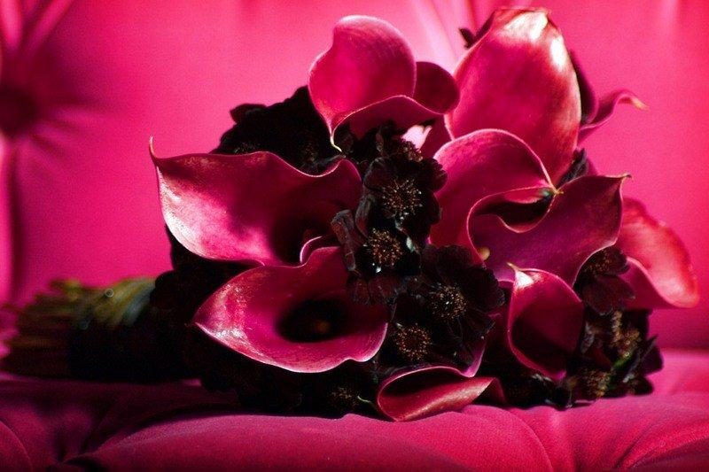 Гламурные цветов